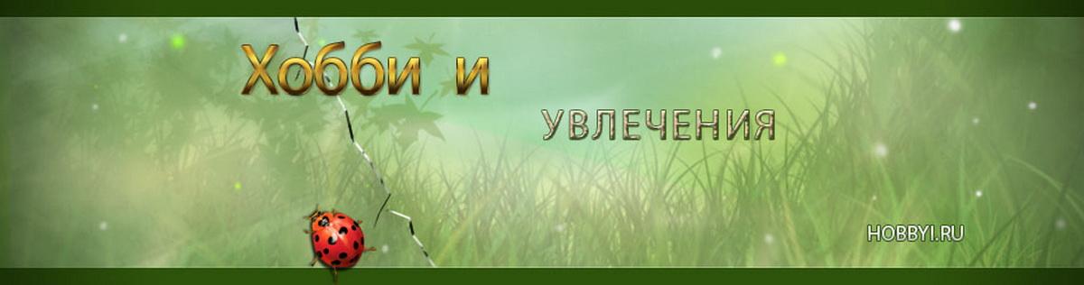 Хобби и увлечения logo